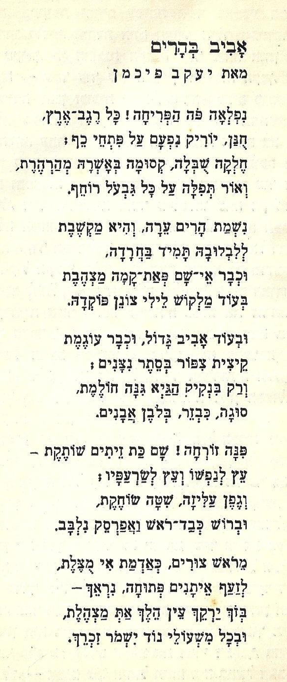 Aviv song-10003