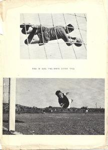 """מתוך הספר """"תורת הכדורגל"""". הקליקו על התמונה להצגת תמונה מוגדלת."""