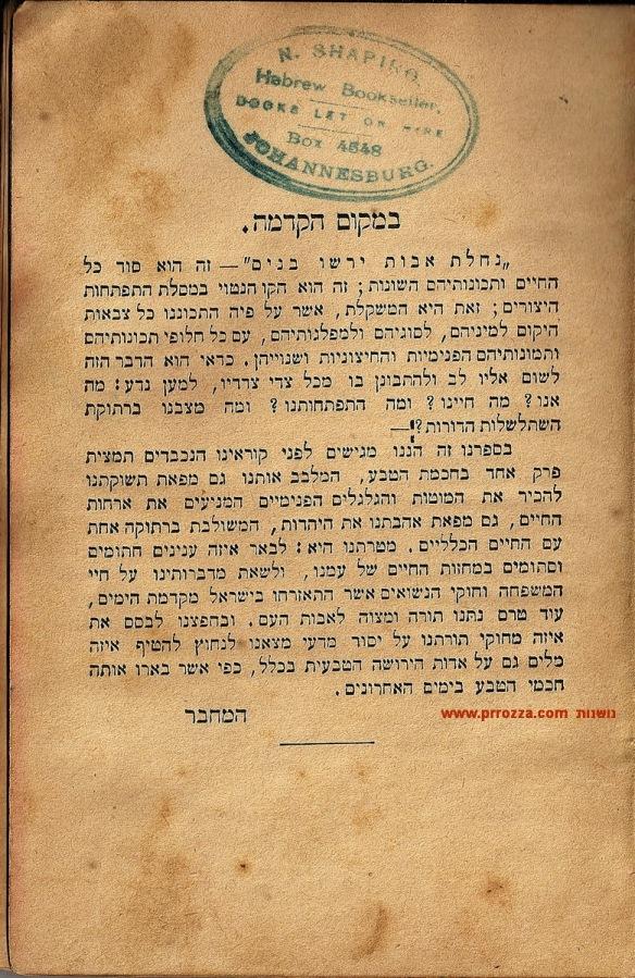 Ben-Avigdor-3