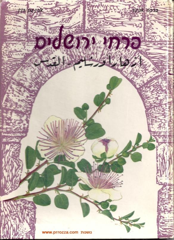 cricha-jerusalem-s